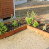 2年目の家庭菜園