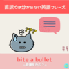 bite the bullet 意味&使い方解説 【直訳では分からない英語フレーズ#9】
