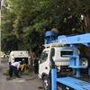 境内樹木伐採作業