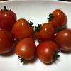 【トマトベリー いちごみたいなトマトって?】