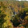 【見頃】鳴子峡の紅葉へ電車でアクセスする方法【仙台駅からの行き方】