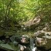 日本二百名山『毛無山』は春真っ盛り、そして盛りだくさんのコースを体験