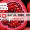 【インドの果物】スーパーフード★ザクロ(Pomegranate)の上手な切り方・栄養価と効能をご紹介