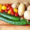 キュウリ、そして赤と黄色のミニトマトに始まる夏野菜。