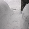 玄関先をふさぐほどの大雪