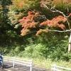 高槻 萩谷総合公園