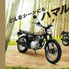 高知県のバイク事情、在庫僅少。