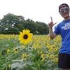 【多摩ランニングコース】この夏おすすめ!!ひまわりにも出会える昭和記念公園ラン