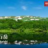 【東北】焼石岳、東北随一の花の山、ハクサンイチゲ咲き乱れる稜線に心踊る、岩手の隠れ名山の旅