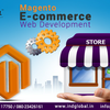 Ecommerce Web Design in Bangalore