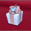【FF14】ミニオンをプレゼントしたいけど、相手が持ってないのは??