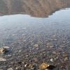 【後編】西湖キャンプ・ビレッジ「ノーム」レポ。湖畔の朝は気持ちいい! 新しい温泉にも寄ってきました。