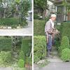 我が家の庭の歴史; 身近な緑とは 2