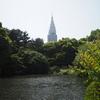 春のピクニック:新緑の新宿御苑をお散歩