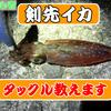 【ライトエギング】剣先イカタックルのススメ