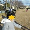 ☆公園と年賀状と塗り絵☆