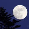 小望月(月齢13.445)