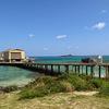 ハワイ・ホノルル:マラソン後のぼろぼろな体で観光-海,スキューバダイビング,アラモアナセンター