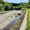 滋賀県 奥永源寺 愛郷の森キャンプ場 川は浅瀬でお子様も安心。隣接の池田牧場では極上ジェラートも♪