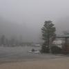 朝靄~^0^