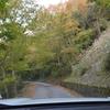 霜降の奥物部遊山 林道の色