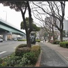 歴史重ねた御利益満載の『洲崎神社』