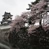 松川べりの桜とチンドンパレード