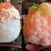 【奈良かき氷】 和CAFE 布穀薗(ふこくえん) さん 2021年8月 (奈良かき氷ガイド2021掲載メニュー)