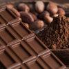 チョコレートと健康 ~ポリフェノール~