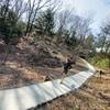 【多摩ランニングコース】ヤマツツジの小径が開通、平山城跡公園