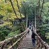 四国一周ドライブ旅行 2日目 〜 かずら橋・琵琶の滝(徳島)〜