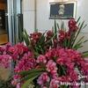 日本国内のマリオットボンヴォイホテル一覧リスト2019!Marriott Bonvoyのカテゴリー、無料宿泊ポイント数、ランク