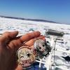 北海道流氷旅
