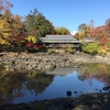 秋の庭園巡り・伊豆編①。三島・楽寿園、隆泉苑(佐野美術館庭園)の紅葉