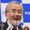 韓国主要全紙にノーベル賞社説 「日本人受賞」を称賛