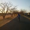 朝、自転車で