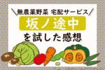 【坂ノ途中のクチコミ】宅配野菜のお試しセットで実際に料理をした感想