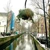アムステルダム 街の様子事情  16