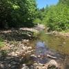雫石町で渓流釣り