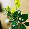 生活に潤いを。月1720円でお花のある生活を始めてみました