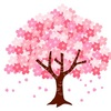 【活動報告】お花見ナンパ
