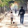 【子供の成長記録】子供の能力UPの促しは10歳まで