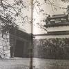 毎日更新 1973年 バックトゥザ 昭和48年 13歳 中学校1年 サンハウス シーナ&ザ・ロケッツ THE MODS ARB 警固中学校 旅ブログ 終活ブログ