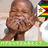 ジンバブエってどんなとこ?ジンバブエ初心者の方へ!