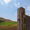 済州島(チェジュ島)5月のおすすめ観光スポット<眩しいほどに美しい済州>