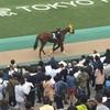 東京競馬10R 秋嶺ステークス パドック直前予想 ◎ 3 イントロダクション9Rアイビーステークス 馬単 3連単的中!