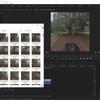 Premiere Proを使って360度ビデオから任意の画像を出力する