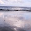 進め!俳句ビギナー②。「海にまつわる俳句をつくりなさいという生涯最強の難敵に挑むべく出掛けた海辺で黄色いブイの凪の夕暮れに困惑は深まるばかりなり」の巻。