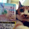 猫さん写真付きの「ちびねこ亭の思い出ごはん」の投稿( @nyanchu_0123 さん)