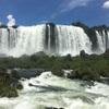 D+8 イグアスの滝 ブラジル側